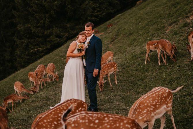 ❤️ Prejela sva NAGRADO za najboljšega poročnega fotografa 2019!