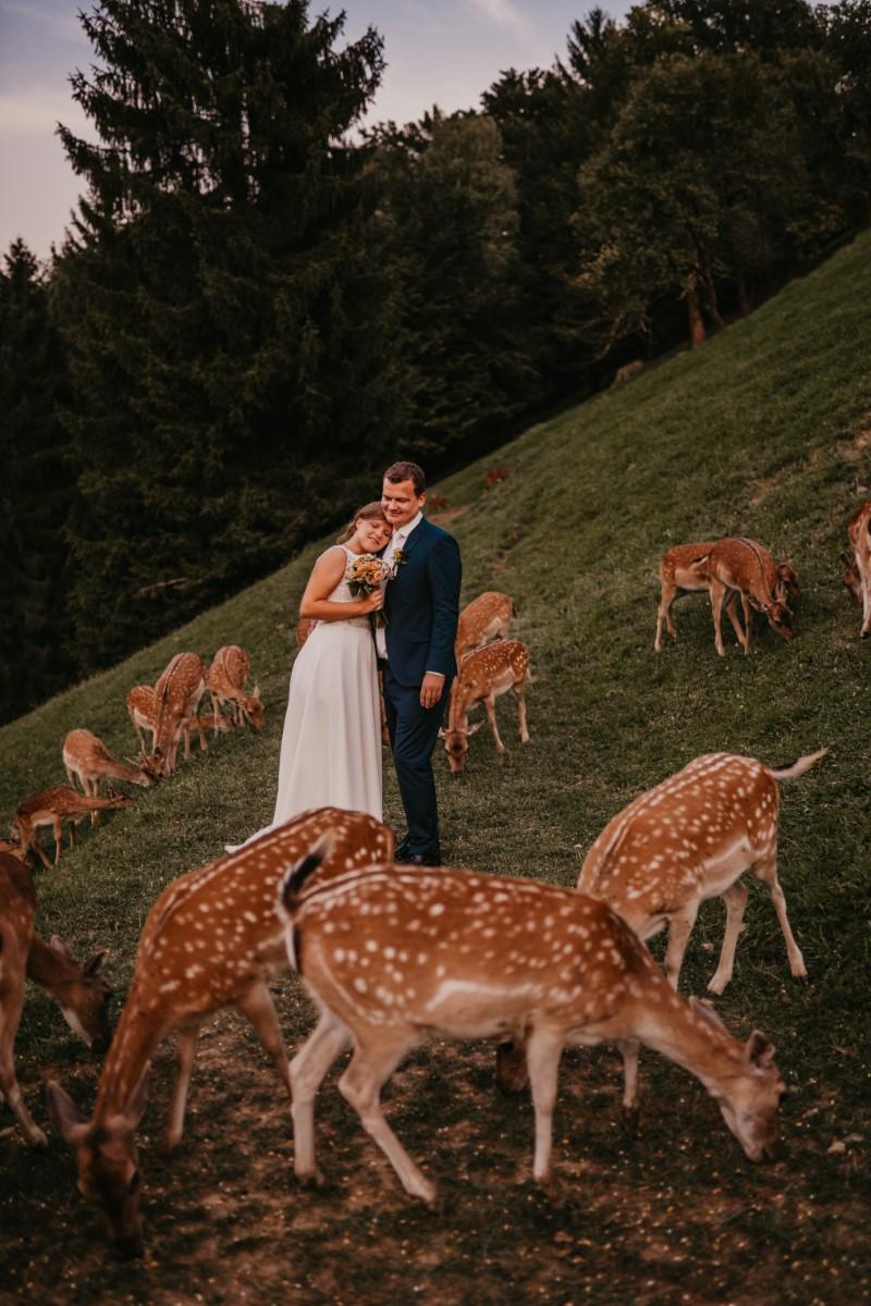 Poroka Jasna in Aleš, Jelenov greben